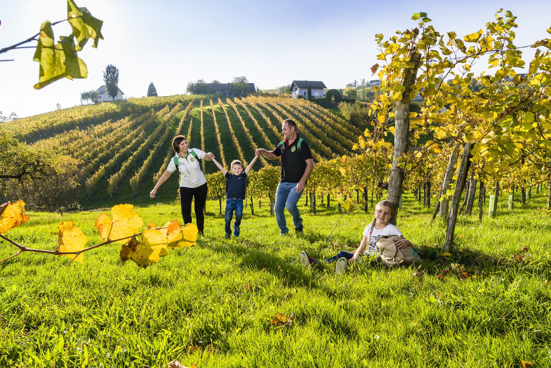 Wein Wandern in der Steiermark
